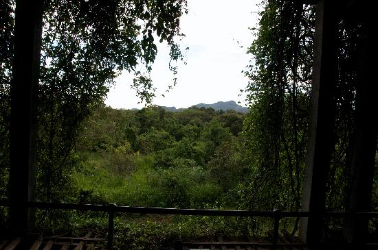 Heritance Kandalama: View from balcony