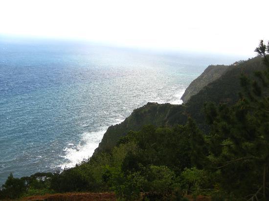 Cabanas de Sao Jorge Village: the view from Cabanas
