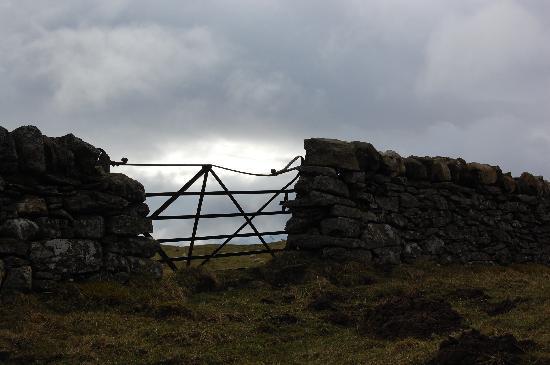 Dalgreine Guest House : på en hed ovanför slottet