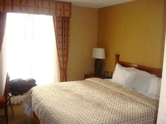 Embassy Suites by Hilton Denver International Airport : bedroom