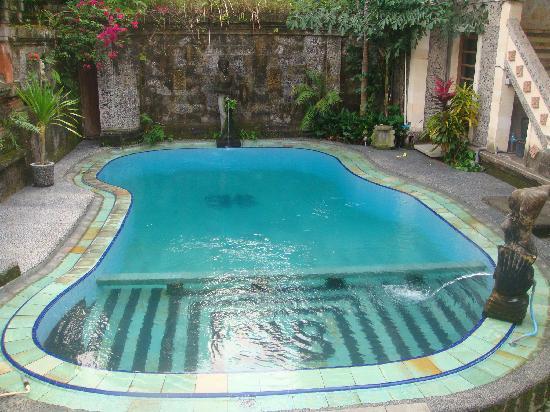 ซาเนีย บังกะโล: la piscine