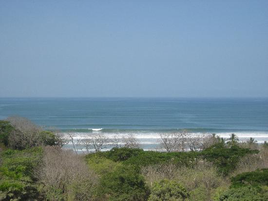 Casa MarBella : The view