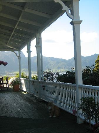Collingwood Homestead: View from the Veranda