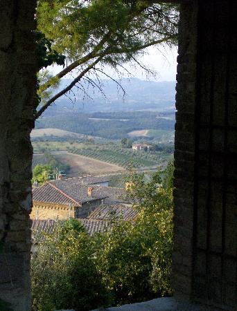Podere Montese: Blick aus dem fenster auf die hauseigenen Weinberge