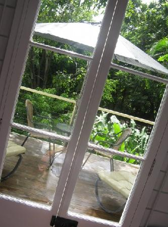 Port Douglas Cottage & Lodge: View from bedroom