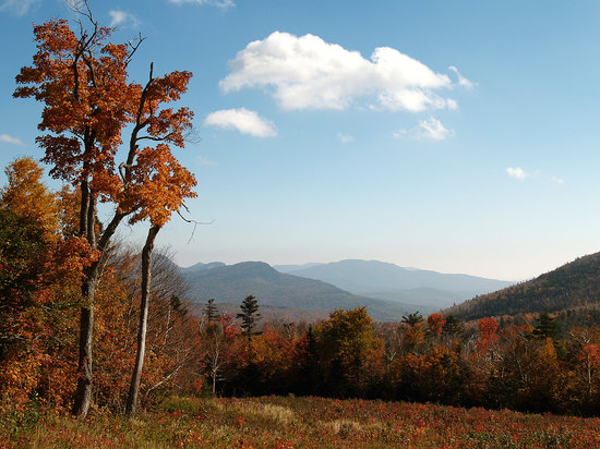 Норт-Конвей, Нью-Гэмпшир: View from the Kancamagus Highway