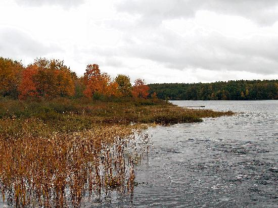Pond Near Clary Lake North Whitefield Maine Picture Of