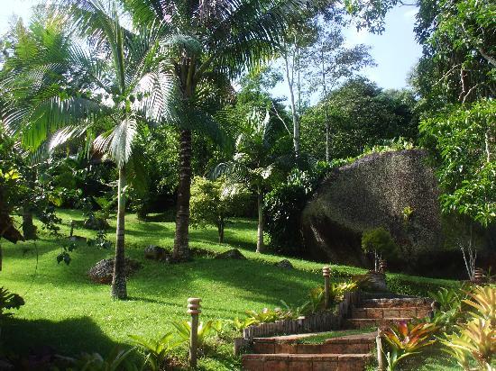 Pousada Bromelias: Jardin immense de la poussada