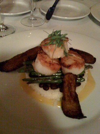 Latorre's Restaurant and Bar: Scallops over Coconut rice at Latorre's