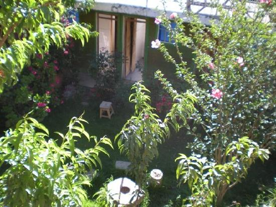 Hostal La Nusta: morning in la Nusta - ducks!!
