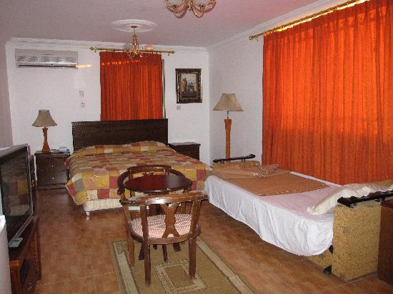 Rae'd Hotel Suites: This is one of 2 suites but rooms are similar