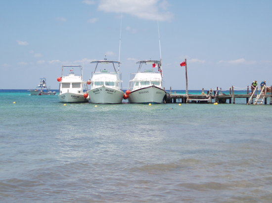 Dressel Divers : The 3 Dressel boats at the Iberostar