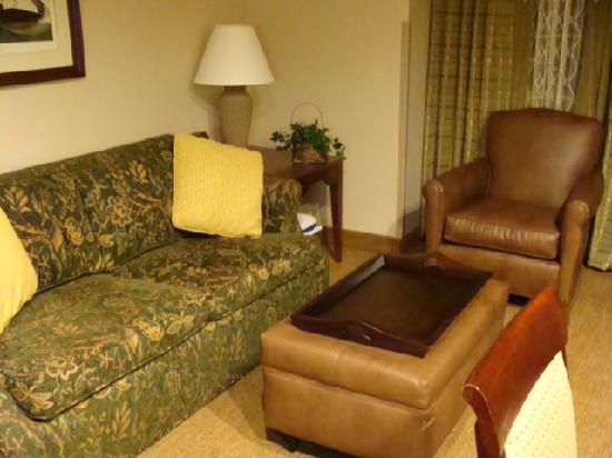 Homewood Suites by Hilton Richmond-West End: Sofa with pull out bed