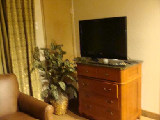 Homewood Suites by Hilton Richmond-West End: Flatscreen tv in all rooms