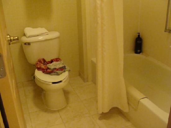 Homewood Suites by Hilton Richmond-West End: Bathroom