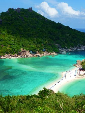 how to get to koh tao from surat thani