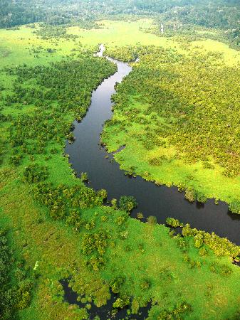Aerial view Loango National Park, Gabon