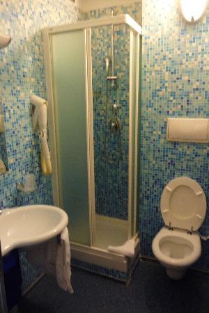 Best Western Hotel Plaza: toilet