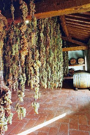 Radda in Chianti, Itália: Vinsanto attic