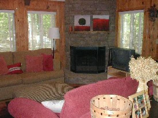 Pine Mountain Club Chalets: Living room of cabin