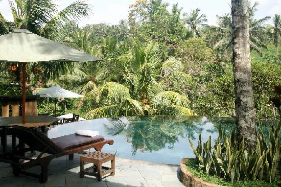 Piscine d bordement picture of villa semana ubud for Piscine a debordement