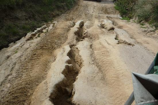 Natures Wonders Naturally : Rough road ispart of the fun