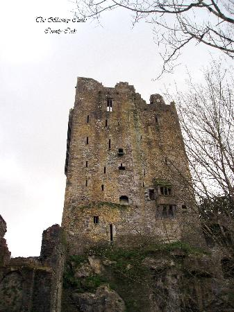 Adare Manor Hotel & Golf Resort: Blarney Castle