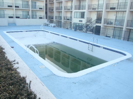 "Howard Johnson Inn Clifton NJ: The ""pool"" - filled with algae and garbage."