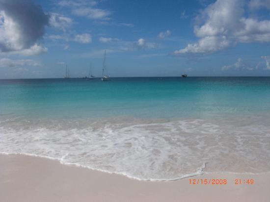 Brown S Beach Picture Of Barbados Caribbean Tripadvisor