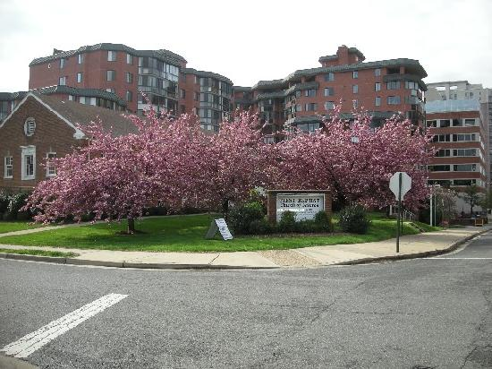 Comfort Inn Ballston: on the way from ballston station to the hotel