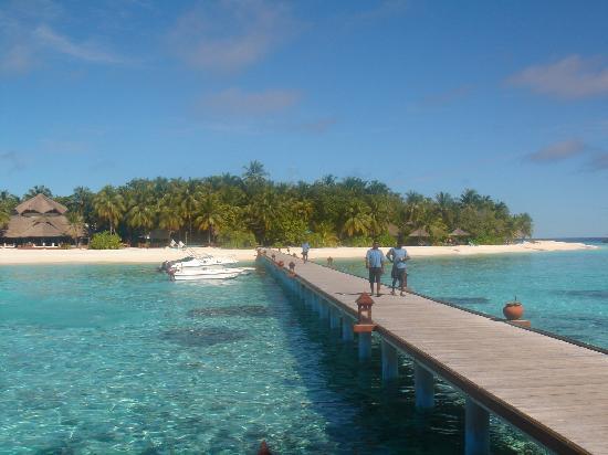 Banyan Tree Vabbinfaru : The dock