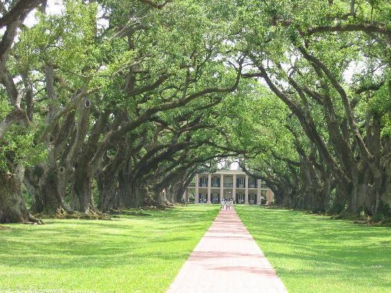 Новый Орлеан, Луизиана: Oak Alley Plantation