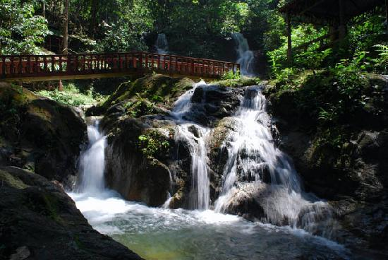 Waterfall Number 1 Picture Of Kanching Rainforest