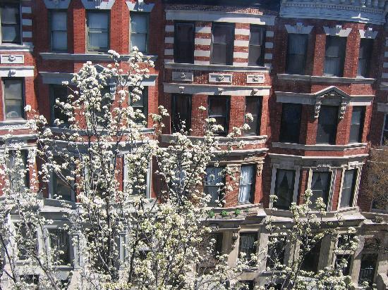 Candy Hill Harlem: la vue de la fenêtre du salon