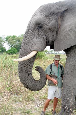 Sanctuary Baines' Camp: Doug with Jabu in Okavango Delta