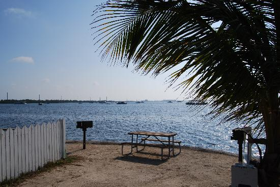 Boyd's Key West Campground: Our campsite.