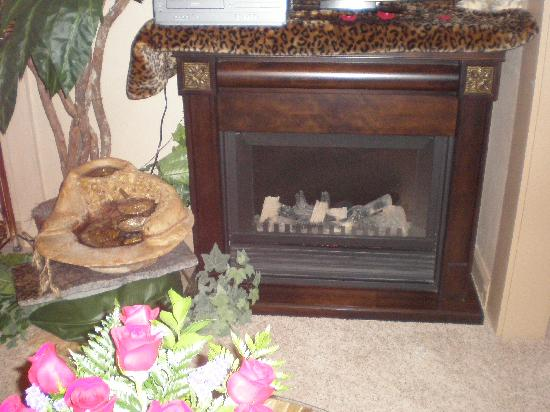 1884 Wildwood Bed and Breakfast Inn: Fireplace in the Living Room