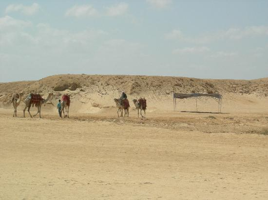 Three Corners Fayrouz Plaza Beach Resort: désert donnant accès à la plage