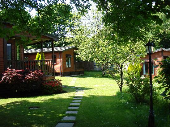 St. Tinney Farm Holidays: Two bedroom Pine Lodges in the Old Orchard