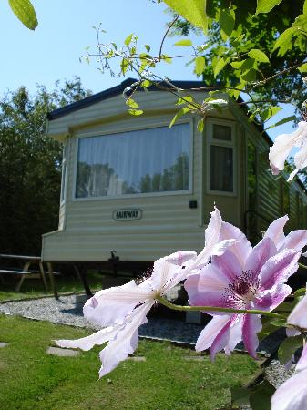 ‪‪St. Tinney Farm Holidays‬: Fairway Classic Caravan Holiday Home‬