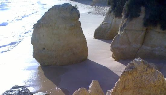 Auramar Beach Resort: Beach near Auramar