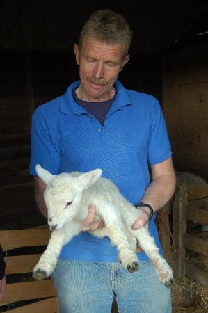 Bramley House: David with a one-day-old lamb