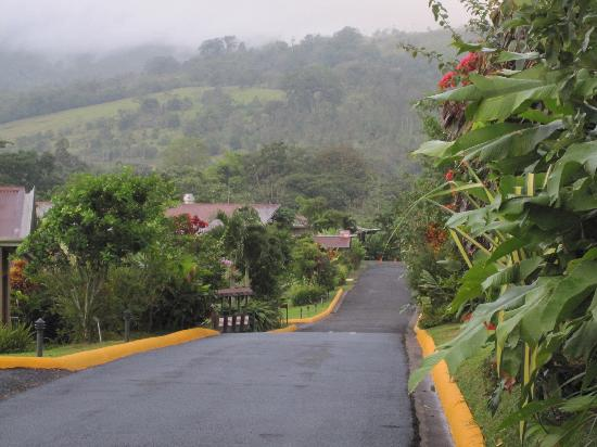 Arenal Springs Resort and Spa: road to all rooms