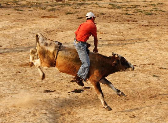 El Sol Verde Lodge & Campground: Local rodeo held weeknights