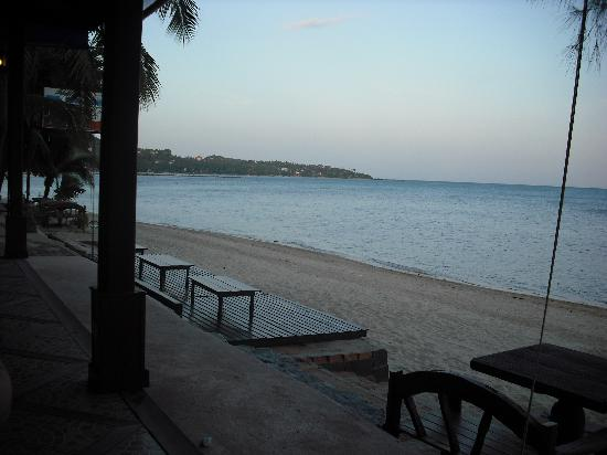 Sand Sea Resort & Spa: view from our restaurant table