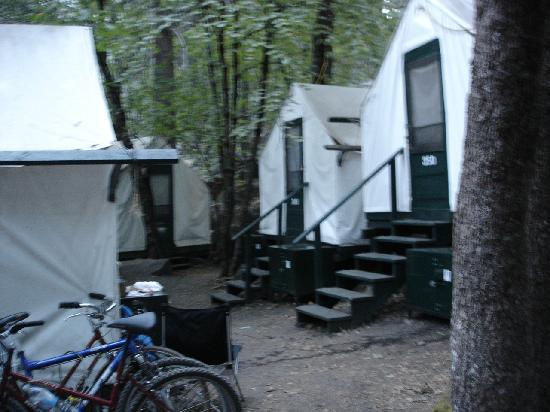 Our cabin 4b picture of half dome village yosemite for Half dome tent cabins