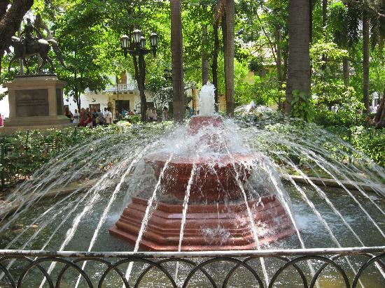Muraille : Shaded Beauty of Bolivar Park