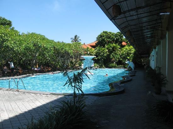 Febri's Hotel & Spa: The pool