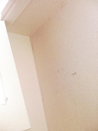 Rosen Inn International : room was dirty