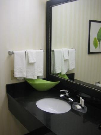 Fairfield Inn & Suites Carlisle: Washroom